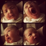 The Many Faces of Norah